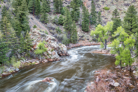 fort collins: Cache la Poudre River at Big Narrows west of  Fort Collins in northern Colorado - springtime scenery with a snow melt run off