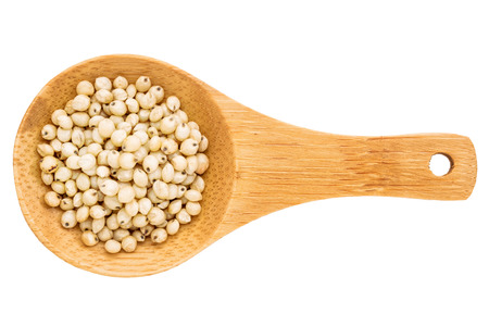 food staple: white sorghum grain on a small wooden spoon isolated on white with a clipping path