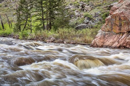 collins: Cache la Poudre River west of  Fort Collins in northern Colorado - springtime scenery with a snow melt run off