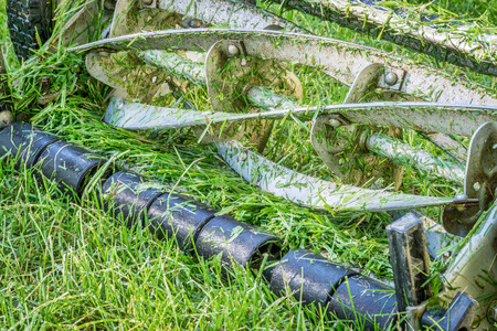 button grass: blades of push reel lawn mower with grass clips Stock Photo