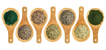 wrack: seaweed and algae nutrition supplements (Irish moss, wakame, bladderwrack, wakame, kelp, spirulina,chlorella) - top view of isolated wooden spoons Stock Photo