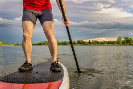 paddler: legs of muscular male paddler on a stand up paddleboard - a calm lake in summer