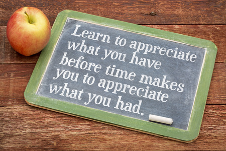 appreciate: Learn to appreciate what you have before time makes you appreciate what you had - inspirational phrase on a slate blackboard against red barn wood Stock Photo