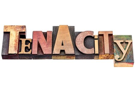 tenacity: tenacity word abstract - isolated text in mixed vintage letterpress wood type printing blocks