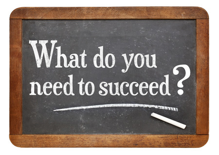 succeed: What do you need to succeed?  A question on a vintage slate blackboard, A success concept.