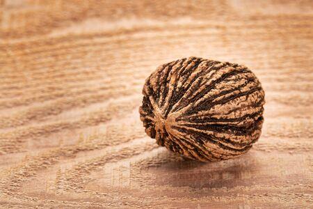 black walnut - a single nut against cedar wood plank with a copy space