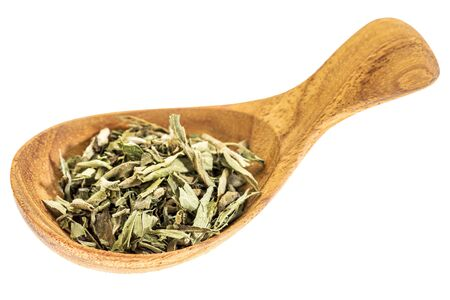 dried herbs: stevia dried leaves on wooden spoon isolated on white - natural sweetener, sugar substitute