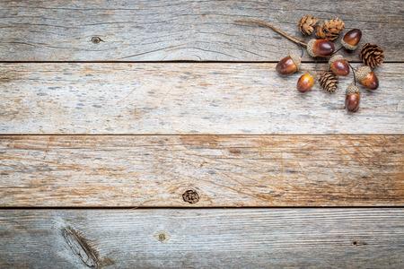 degradado de fondo de madera del granero con bellotas y conos caen decoración