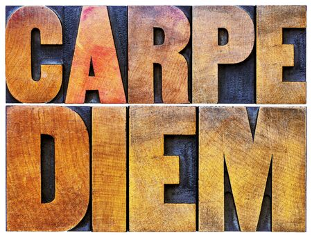 existential: Carpe Diem  - enjoy life before it is too late, existential cautionary Latin phrase by Horace - isolated text in vintage letterpress wood type printing blocks stained by color inks Stock Photo
