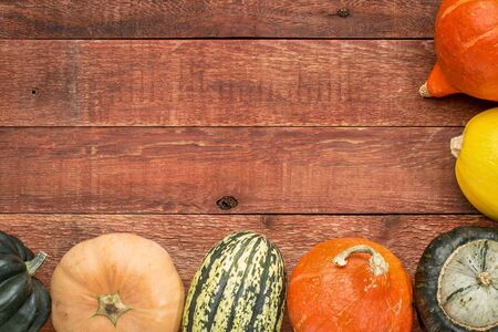 red barn wood background with framed by a variety of winter squash fruits