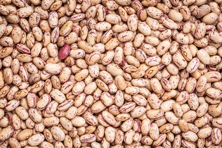 pinto beans: background and texture of crimson cranberry beans (similar to pinto bean, but different in taste) Stock Photo