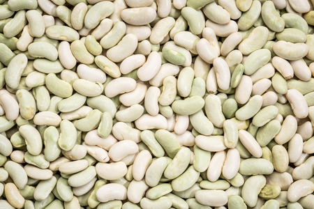 common bean: background and texture of flageolet  beans (a variety of the common bean originating from France, the flageolet is picked before full maturity and dried in the shade to retain its green color). Stock Photo