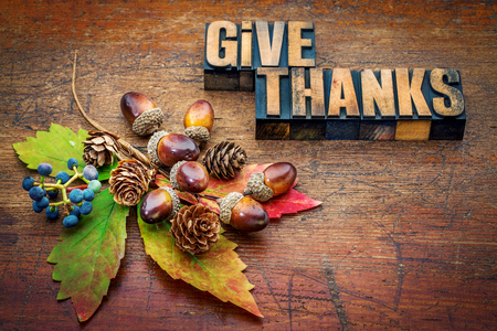 give thanks - Thanksgiving concept - text in letterpress wood type printing blocks with cone, acorn, leaf and berries fall decoration Archivio Fotografico