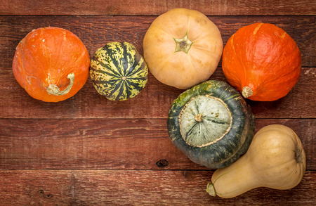 squash: a variety of winter squash fruits on a rustic wooden table with a copy space, fall holiday background