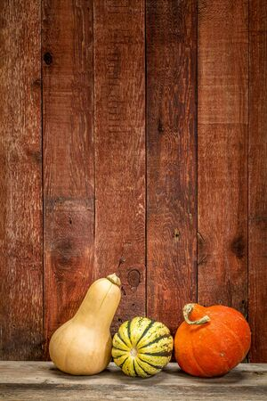 winter squash against rustic red painted barn wood Stock Photo