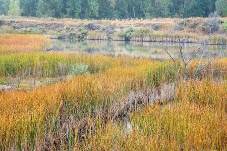 collins: foggy fall day in wetlands - Riverbend Ponds Natural Area, Fort Collins, Colorado Stock Photo