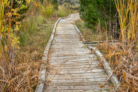 metaphor: winding nature trail - wooden boardwalk path through wetlands in a fall scenery - a journey metaphor
