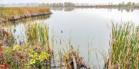 fort collins: foggy fall day in wetlands - Riverbend Ponds Natural Area, Fort Collins, Colorado Stock Photo