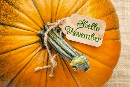 Hello November price tag on a pumpkin against burlap canvas