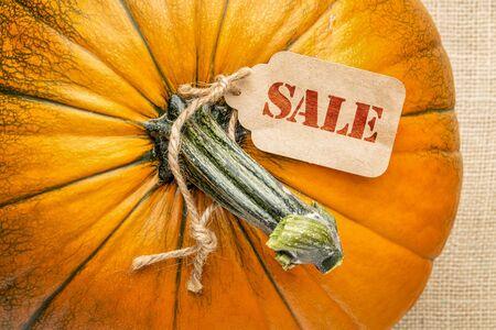 A pumpkin against burlap canvas with a sale price tag