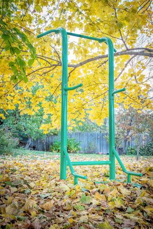 backyard fitness concept - outdoor fitness tower for a variety of exercises including chin-up, pull-ups, push-ups, sit-ups, a fall scenery with a maple tree