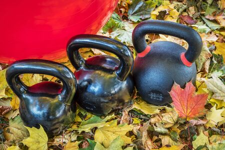 swiss ball: black iron exercise kettlebells and Swiss ball with maple leaves - outdoor  fitness concept