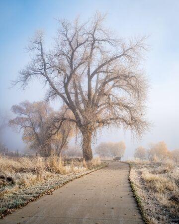 foggy November morning on a bike trail  - Poudre River Trail near WIndsor, Colorado, fall scenery 스톡 사진