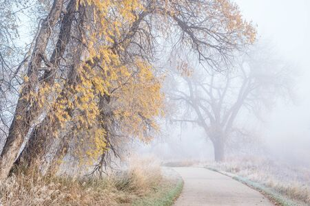 trails: foggy November morning on a bike trail  - Poudre River Trail near WIndsor, Colorado, fall scenery with remains of gold foliage and frost Stock Photo