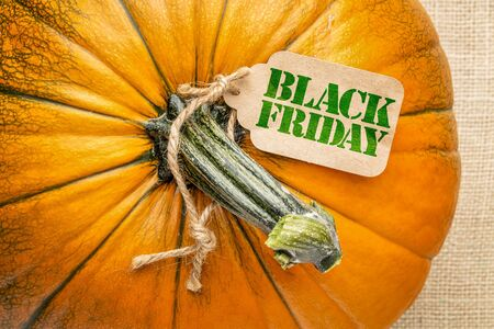 Black Friday price tag on a pumpkin against burlap canvas