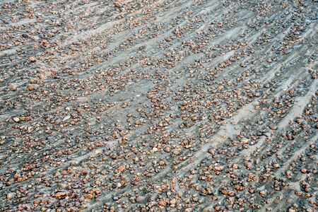 south platte river: river gravelbar texture and pattern - South Platte RIver in eastern Colorado