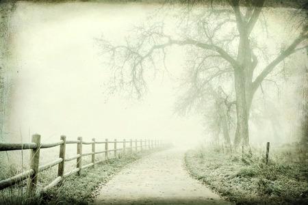 fog: nostalgic autumn scene, foggy park trail - landscape with a grunge texture effect Stock Photo