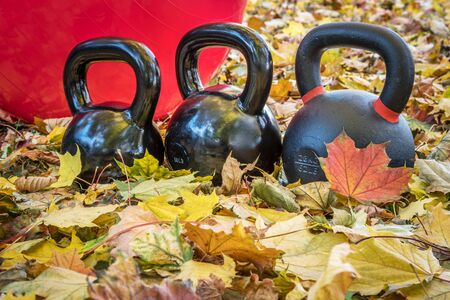 outdoor fitness: black iron exercise kettlebells with red  Swiss ball and maple leaves - outdoor  fitness concept
