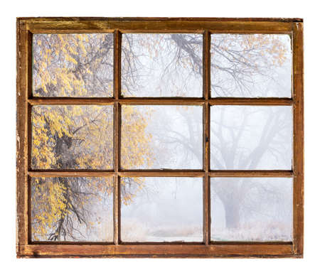 window view: foggy, nostalgic autumn park  - an abstract view from a vintage sash window