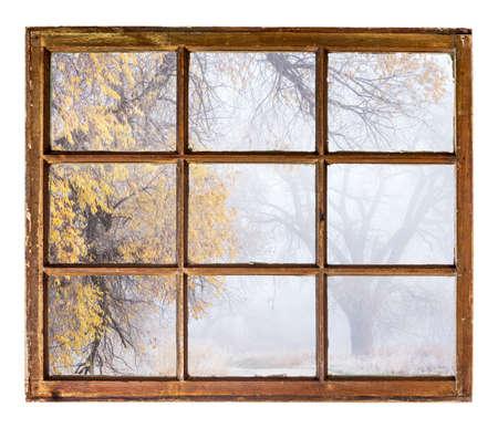 sash: foggy, nostalgic autumn park  - an abstract view from a vintage sash window
