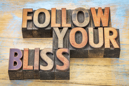 follow your bliss - inspirational advice in vintage letterpress wood type printing blocks stained by color inks Фото со стока - 54299646