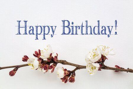 flores de cumpleaños: Feliz Cumpleaños - escritura a mano en la lona de arte de flores blancas con albaricoquero Foto de archivo
