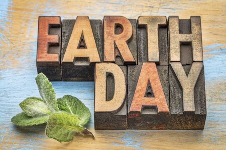 environmental awareness: earth day - word abstract in vintage letterpress wood type with a green peppermint leaf