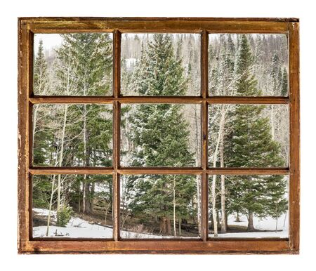aspen grove: spruce and aspen grove  in winter  as seen  through vintage, grunge, sash window with dirty glass - travel or vacation concept Stock Photo
