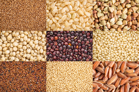 nine healthy, gluten free grains (black quinoa, two varieties of brown rice, millet, amaranth, teff, buckwheat, sorghum, kaniwa), a collage of top view life size macro images Stockfoto