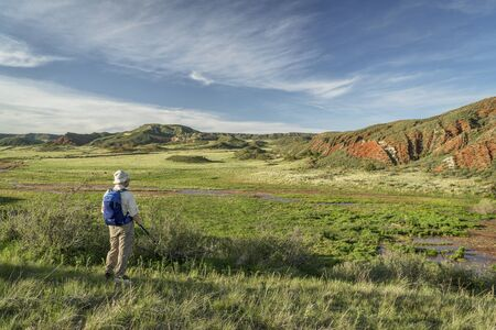 fort collins: senior hiker at Colorado foothills  - Red Mountain Open Space in northern Colorado near Fort Collins, early summer scenery