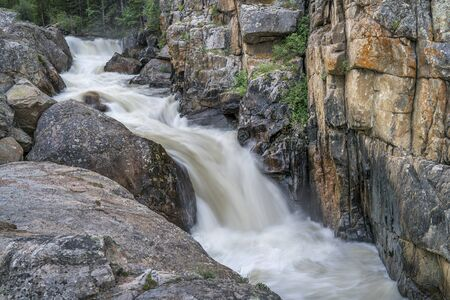 cache la poudre: Cache la Poudre River at Poudre Falls in northern Colorado, , early summer scenery with a high flow
