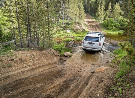 dirt road recreation: RED FEATHER LAKES, CO, USA - JUNE 3, 2016: New Toyota 4Runner SUV (2016 Trail edition) crossing a mountain stream - Sand Creek Road in Colorados Rocky Mountains