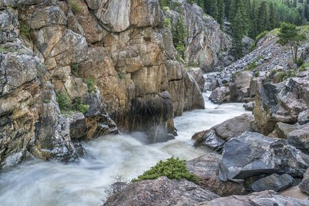 cache la poudre river: Cache la Poudre River at Poudre Falls in northern Colorado, , early summer scenery with a high flow