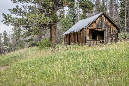 ruins of a vintage cabin along Old Flowers Road in Roosevelt National Forest, a popular jeep trail near Fort Collins, Colorado Stock Photo