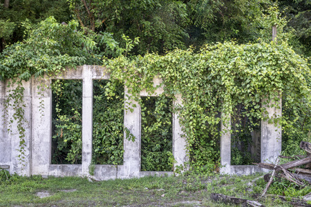 ruins of concrete building are repossessed by vegetation