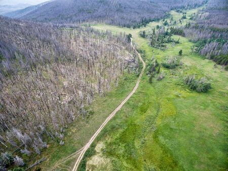 fort collins: Old Flowers Road and a forest burned by wildfire - aerial view. It is a popular  trail in Roosevelt National Forest near Fort Collins, Colorado Stock Photo