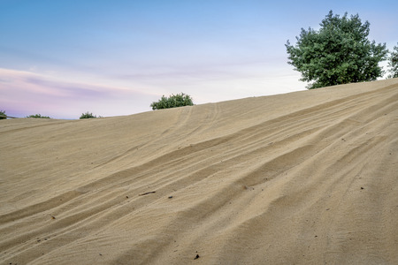legally: off road vehicle tracks on sand dune - North Sand Hills, only place in Colorado to legally ride on sand dunes