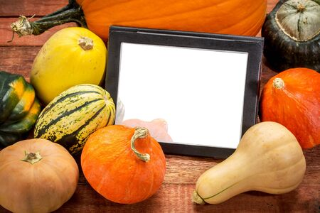 blank digital tablet surrounded by pumpkin and winter squash, Halloween or Thanksgiving decoration