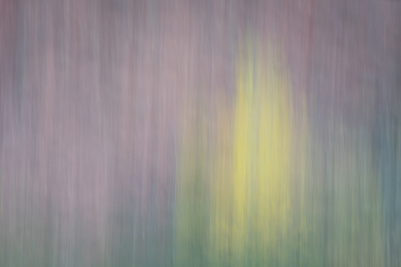 motion blur: Canyon and trees in fall colors - nature motion blur abstract