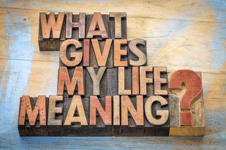 letterpress blocks: What gives my life meaning? - Word abstract in vintage letterpress wood type blocks Stock Photo